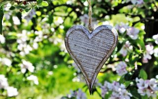 silver heart hanging in a tree
