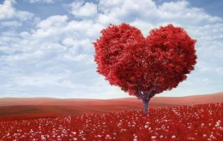 red heart tree in red flowers