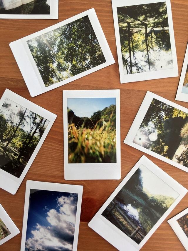 polaroid photos on a board
