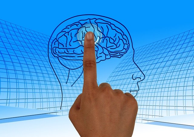 Image of brain and finger tapping it